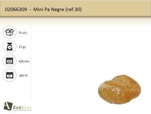 Mini Pa Negre
