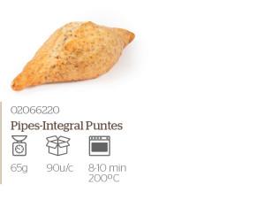integral-puntes