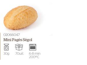 mini-pages-segol