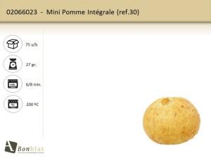 Mini Pomme Intégrale