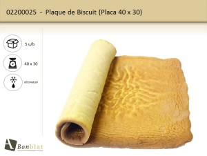 Plaque de Biscuit