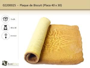 Plaque de Biscuit